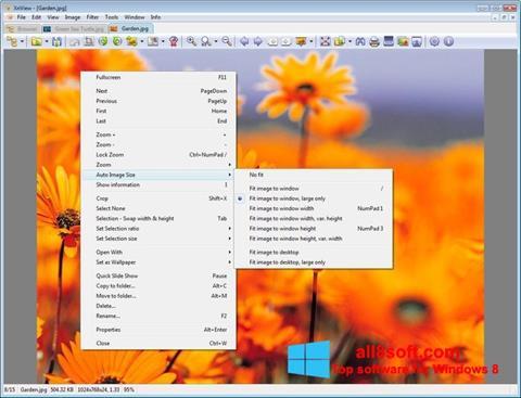 Zrzut ekranu XnView na Windows 8