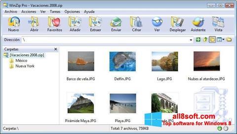 Zrzut ekranu WinZip na Windows 8